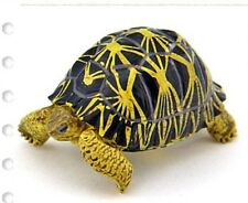 Japan Colorata Radiated Tortoise pvc mini figurine Figure Model