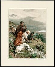 ENGLISH GORDON IRISH SETTER DOGS AND GAMEKEEPER DOG PRINT MOUNTED READY TO FRAME