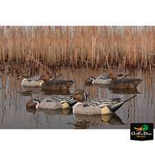NEW ZINK AVIAN-X TOP FLIGHT PINTAIL FLOATER FLOATING DUCK DECOYS 6 PACK