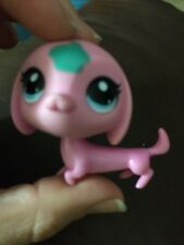 Littlest Pet Shop Dachshund Dog Pink , Blue Eyes, Teal Cupcake
