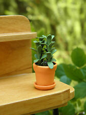 Miniature Dollhouse FAIRY GARDEN ~ Tall Dark Green House Plant in Pot ~ NEW