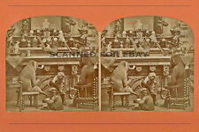 MONKEY BUSINESS stereoview art print picture 3d photo funny humorous satire