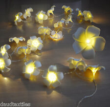 20LED SOLAR POWER FRANGIPANI FLOWER LIGHT STRING LEAD WIRE 2M FAIRY LIGHT NEW