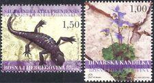 Bosnie 2004 salamandre/aquilegia/lézard/animaux/fleurs/nature 2v set (n44342)