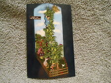 VINTAGE - POST CARD  - JACK AND THE BEANSTALK - LOOKOUT MOUNTAIN