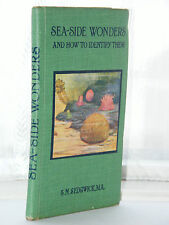 S N Sedgwick - Sea Side Wonders 1919 Edition HB