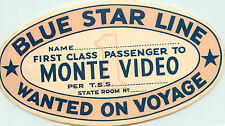 The BLUE STAR LINE ~First Class Passenger to MONTE VIDEO~ Steamship Label, 1920