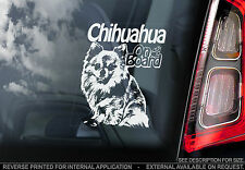 Chihuahua - Car Window Sticker - Dog on Board Sign Art Gift LONG Haired - TYP2