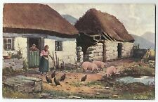 irish life postcard ireland pigs pig