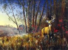 "Misty Morning By Jim Hansel Bow Deer Hunting Art Print Image Size 12""x 7.75"""