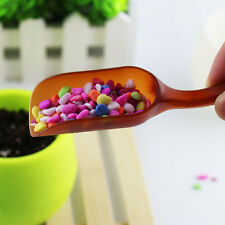 Useful Multifunctional Shovel Spoon Succulents Pot Essential Gardening Tools NEW
