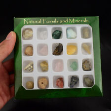 20pcs fossil and mineral specimen Teaching School Collection fossil rock display