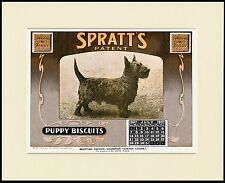 SCOTTISH TERRIER DOG FOOD CALENDAR ADVERT PRINT MOUNTED READY TO FRAME