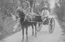 B95230 nes i hallingdal real photo chariot types folklore norway