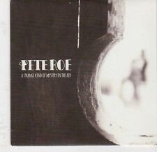 (EJ847) Pete Roe, A Strange Kind of Mystery in the Air - 2013 DJ CD