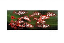 Follow Me Spawning Salmon Richard Shorty Art Card Northern Tuchone Yukon Native