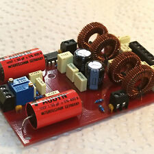 __DIY MODULE 58x90mm 2x25W_Class-T_Amp. Tripath's_TA2021B_IC (soldered & tested)