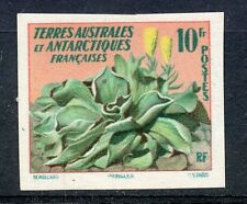 PROMO / STAMP / TIMBRE TAAF/T.A.A.F. TERRES AUSTRALES NEUF N° 11 ** NON DENTELE