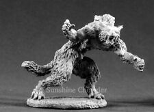 Jean Paul Duchamps 02139 - Dark Heaven Legends - Reaper Miniatures D&D Werewolf