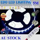 12V Cool White 5M 5630 SMD 300 Leds LED Strips Strip Light Waterproof + Dimmer