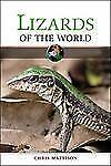 Lizards of the World by Mattison, Christopher