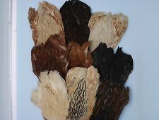 4 Natural Hen Capes, Grade AA, Fly tying materials, feathers, crafts.