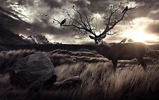 """ANIMALS DEER SUNSET STUNNING LANDSCAPE Large Wall Art Canvas Picture 20x30"""""""