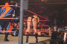 Stacy Keibler WWE Divas Sexy Ass Photo #2