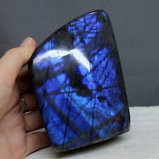 "4.3"" Amazing Royal Blue Flash Labradorite Spectrolite Freeform Stone, Lbt91"
