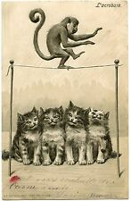 CHATS . CATS. LE SINGE ACROBATE. MONKEY.  GAUFRé. EMBOSSED