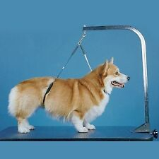 Pet No Sit Haunch Holder Grooming Dog Restraint Arm Loop Small-Medium 19X21""