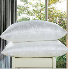 100% Mulberry Silk Filled Pillow,2016 New Design Fashion Pillow for USA Europe