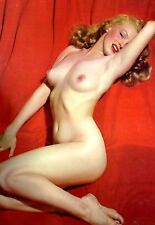 "1951/52 Marilyn Monroe Golden Dreams SALESMEN SAMPLE Calendar Pinup 15""by20""RARE"