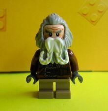 LEGO® Herr der Ringe/Hobbit™ OIN aus Set 79004