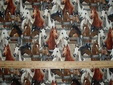 Cotton Fabric Wild Wings Horses behind the Fence Wild BTY