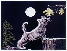 1998 Cross My Heart Classic Counted Cross Stitch Kit MAX'S MOON Cat Picture Kit