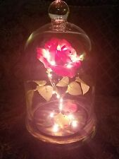 Enchanted rose beauty and the beast night lamp