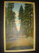 Vintage linen PC Highway Through the Evergreens of the Great Northwest