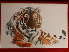 Siberian Tiger with Green Eyes White Snow 24X36 1999 Poster Picture Art Print
