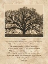 Life Is... by John Jones Inspirational Sayings Mother Teresa Print Poster
