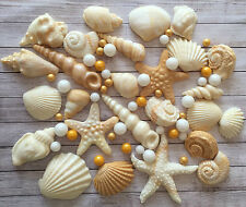 24 natural Shells & pearls,fondant cupcake toppers by Emma,Wedding