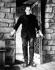 Famous Monsters Frankenstein Photo Print 13x19""