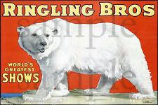 RINGLING BROS CIRCUS BEAR BUILDING SIGN DECAL 3X2  MORE SIZES AVAIL
