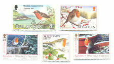 Robins-birds Isle of Man-(5)mnh