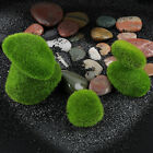 Floating Fish Tank Ornament Aquarium Plant Cladophora Marimo Moss Balls Decal