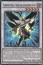 *** BLACKWING - GRAM THE SHINING STAR *** (GERMAN) TDIL-DESE1 MINT/NM YUGIOH!