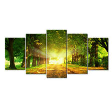 Framed Canvas Art Print Photo Pic Wall Home Decor Poster Landscape Green Forest