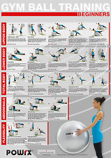 Gym Ball Workout, Level 1, 20  exercise challenging ideas for total body.