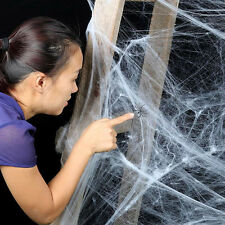 Pop Stretchy Spider Web Cobweb With Spider For Halloween Party Decoration