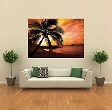 TROPICAL SUNSET BEACH PALM TREE  NEW GIANT POSTER WALL ART PRINT PICTURE X1424